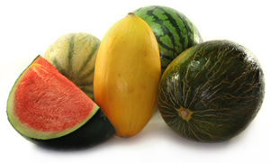 Variety of melons on a white background.